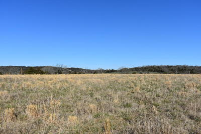 Kirbyville Residential Lots & Land For Sale: Tbd Wellington Parkway