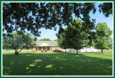 Fordland Single Family Home For Sale: 3128 New Hope Road