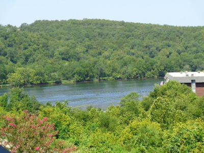 Stone County, Taney County Condo/Townhouse For Sale: 150 Sunken Forest Dr. 8-214