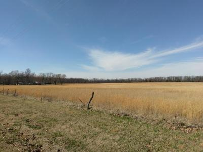 Residential Lots & Land For Sale: 12330 Aspen Road