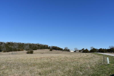 Kirbyville Residential Lots & Land For Sale: Tbd 5.96ac Wellington Parkway