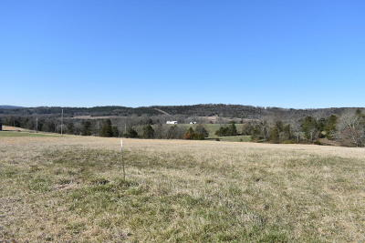 Kirbyville Residential Lots & Land For Sale: Tbd 2.5 Ac Wellington Parkway