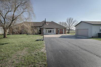 Fordland Single Family Home For Sale: 1266 Indigo Road