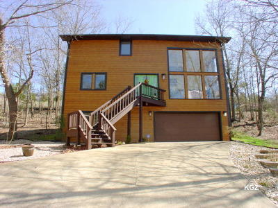 Branson Single Family Home For Sale: 150 Thomas Drive