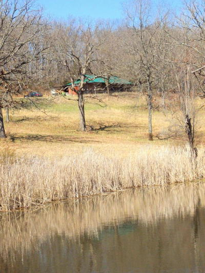 Rogersville Single Family Home For Sale: 976 Compton Hollow Road