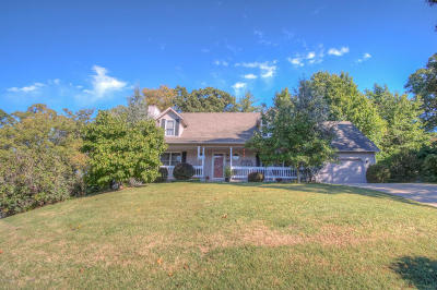 Joplin Single Family Home For Sale: 1205 Valleyview Lane
