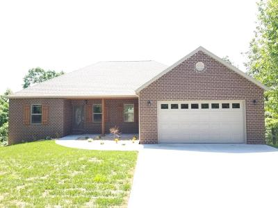 Branson Single Family Home For Sale: 1290 Emory Creek Boulevard