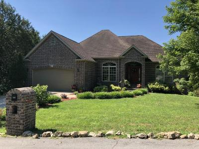 Branson West, Reeds Spring Single Family Home For Sale: 384 Roark Branch Drive