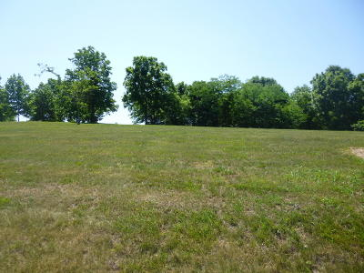 Cape Fair Residential Lots & Land For Sale: Lot 29 Edgewater Village Drive