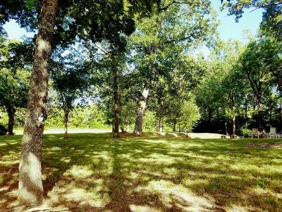 Ozark MO Single Family Home For Sale: $190,000