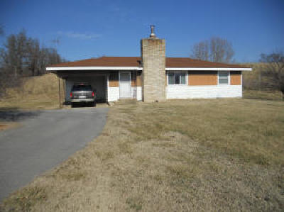 Cassville Single Family Home For Sale: Tract 4 Farm Road 2172