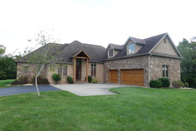Ozark MO Single Family Home For Sale: $415,000