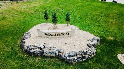 Saddlebrooke Residential Lots & Land For Sale: Saddlebrook Drive