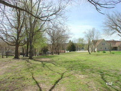 Kirbyville Residential Lots & Land For Sale: Lot 4 Mission Lane