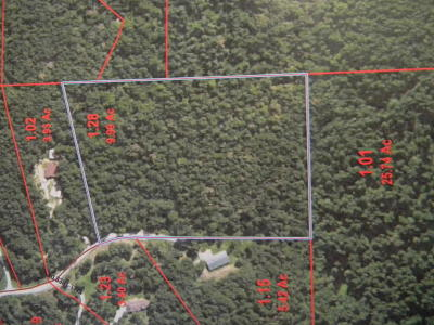 Strafford Residential Lots & Land For Sale: Country Hills Drive