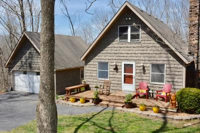 Ozark Single Family Home For Sale: 801 Riverview Road