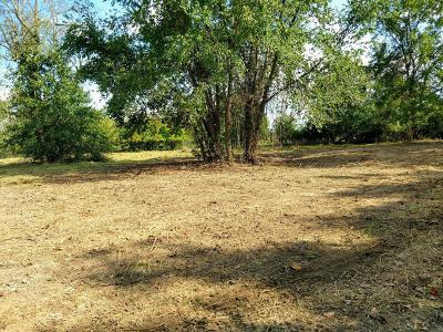Springfield Residential Lots & Land For Sale: South Timbercreek Avenue