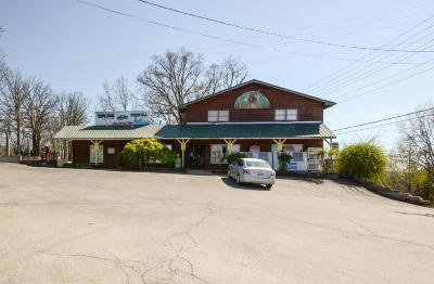 Commercial For Sale: 1056 Indian Point Road