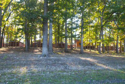 Indian Point Single Family Home For Sale: 26 Cave Lane #Cabin 12