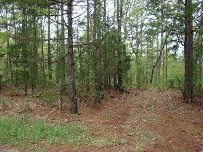 Residential Lots & Land For Sale: Tbd Deer Trail Drive
