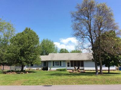 Cassville Single Family Home For Sale: 1201 Lake Road Drive