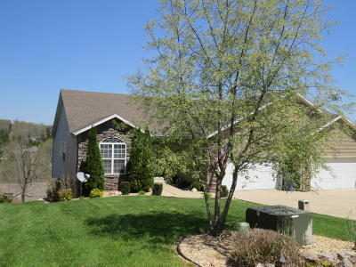 Branson Condo/Townhouse For Sale: 511 Cozy Lane