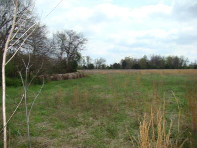 Lots and Land For Sale: Tbd East Brodie Road