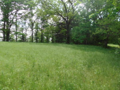 Pineville MO Residential Lots & Land For Sale: $27,500