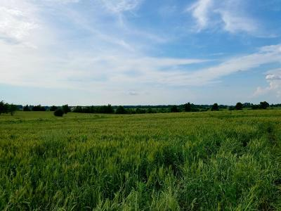Springfield MO Residential Lots & Land For Sale: $65,000