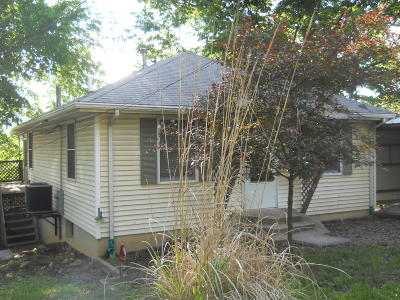 Saint Clair County Single Family Home For Sale: 144 Libby Street Street