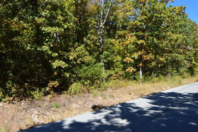 Branson Residential Lots & Land For Sale: Tbd Indian Valley Road