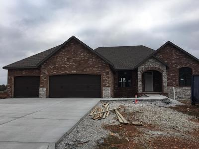 Springfield MO Single Family Home For Sale: $349,995