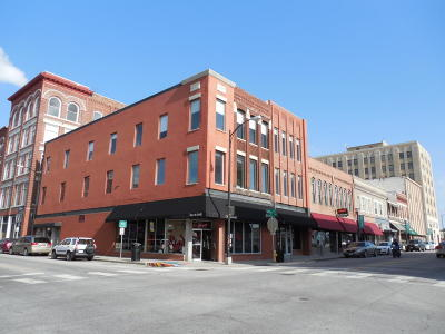 Greene County Commercial For Sale: 400 South Avenue