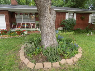 Joplin Single Family Home For Sale: 3401 Connecticut Avenue