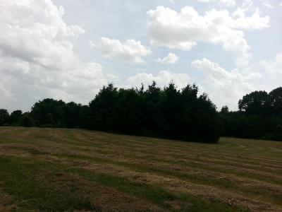 Clever Residential Lots & Land For Sale: Lot 3 Sandy Forest Lane