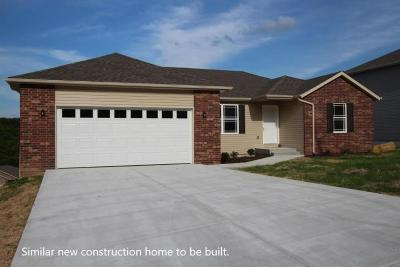 Branson MO Single Family Home For Sale: $196,900