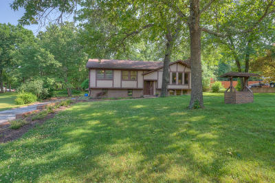 Joplin Single Family Home For Sale: 11127 Helenben Road