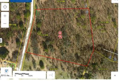Blue Eye Residential Lots & Land For Sale: Tbd Cara Lane