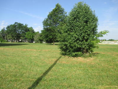 Wheatland MO Residential Lots & Land For Sale: $19,900