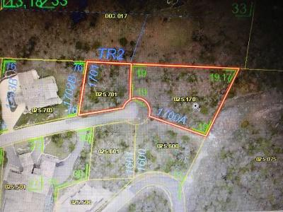 Branson  Residential Lots & Land For Sale: 1701/1700a End Of The Trail Drive