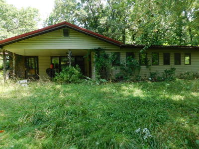 Strafford MO Single Family Home For Sale: $169,999