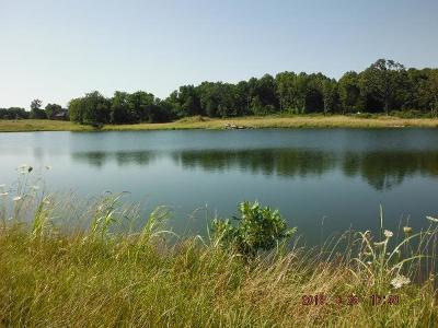 Rogersville Residential Lots & Land For Sale: Farm Road 199