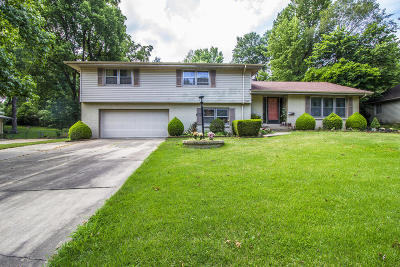 Springfield Single Family Home For Sale: 2204 East Shady Glen Drive