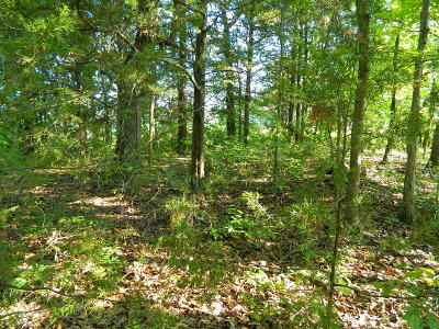 Residential Lots & Land For Sale: 144 Iowa Colony Road