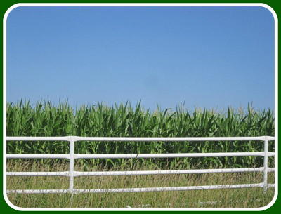 Hickory County Farm For Sale: Tbd Highway 83