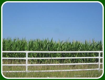 Flemington Farm For Sale: Tbd Highway 83