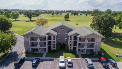 Branson Condo/Townhouse For Sale: 192 West Rockford Drive #2