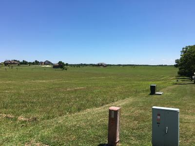Ozark Residential Lots & Land For Sale: Lot 1a North Willow Road