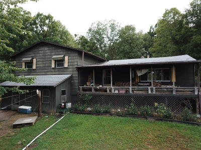 Single Family Home For Sale: 9337 Warner Road