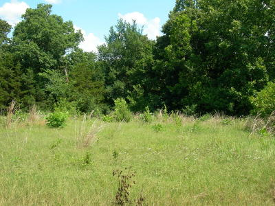 Residential Lots & Land For Sale: Tbd Bunch Road